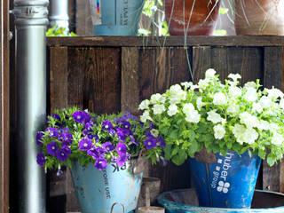 Giardino in stile in stile Rustico di Pflanzenfreude.de
