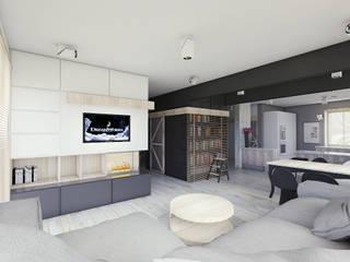 BAGUA Pracownia Architektury Wnętrz Living room