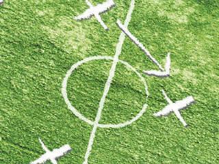 strategieplanung im sport:  Schulen von BCR  informieren | leiten | werben