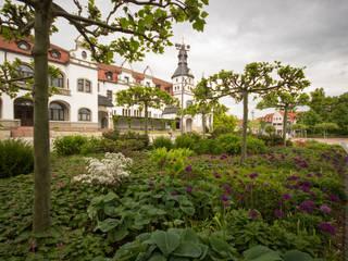 Pflanzung am Kurplatz:  Krankenhäuser von GFSL clausen landschaftsarchitekten gruen fuer stadt + leben