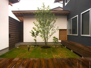 vehicle: Y.Architectural Designが手掛けた庭です。