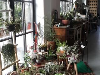 labofem – Shop :  tarz Dükkânlar