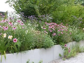 Gartengestaltung München - Gräfelfing: moderner Garten von Blumen & Gärten