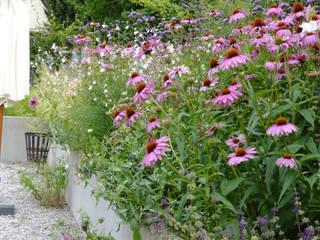 Moderne Gartengestaltung München Gräfelfing: moderner Garten von Blumen & Gärten