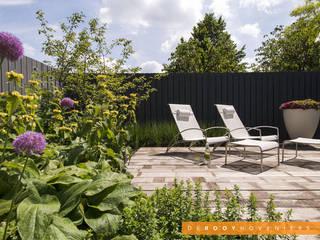 Jardins modernos por De Rooy Hoveniers Moderno