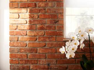 Dinding & Lantai Modern Oleh Za murami za dachami Modern