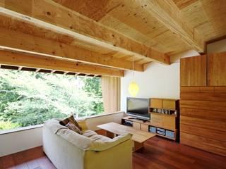 住吉山手の家 オリジナルデザインの リビング の H+M アトリエ オリジナル
