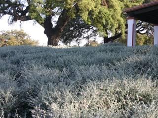 EL ROBLEDO: Jardines de estilo  de LA BELLA SOMBRA PAISAJISMO
