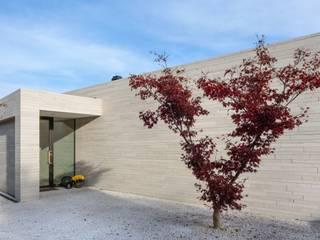 Modern Houses by Franken-Schotter GmbH & Co. KG Modern