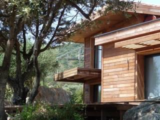 maison Po: Maisons de style  par catherine vinciguerra