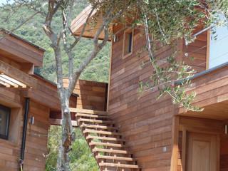 Casas modernas de catherine vinciguerra Moderno