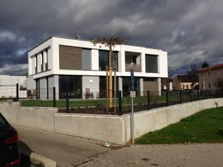 exklusives EFH im Raum Ingolstadt : moderne Häuser von Bachschuster Architektur GmbH