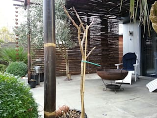 Outside Inside Tropical style balcony, veranda & terrace by Uk Bamboo Supplies Ltd Tropical