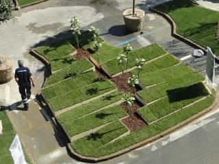 Garden by Moira Busato Landscape