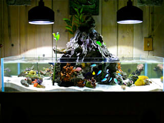 Аквариум морской от Аквариумный салон 'Мир за стеклом' Тропический