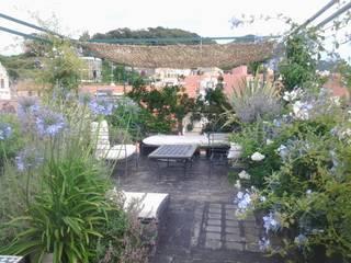 vista collina, a tre mesi dall'intervento:  in stile  di GARDENStudio 'il giardiniere goloso'