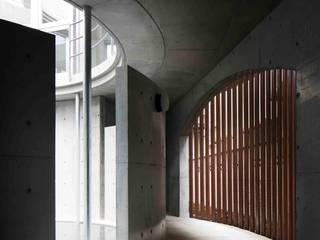 水盤のある都市型コンクリート住宅 モダンスタイルの 玄関&廊下&階段 の スタジオ4設計 モダン