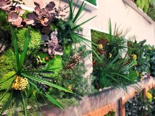 tableaux stabilisés by 3dvegetal:  de style tropical par 3dvegetal, Tropical