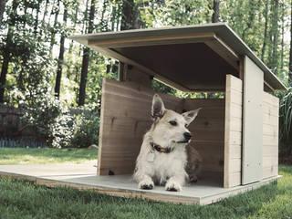 Puphaus Pyramd Design Co хатнє господарство хатнє господарствохатнє господарство хатнє господарство хатнє господарство хатнє господарство хатнє господарство домогосподарстваАксесуари для домашніх тварин