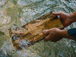 Idee & Konzept Holzgeschichten
