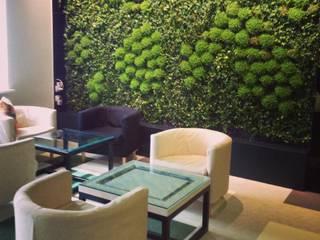 Вертикальное озеленение, монтаж закончен:  в . Автор – RaStenia
