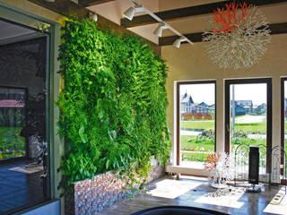 Вертикальный зимний сад в загородном доме:  в . Автор – RaStenia