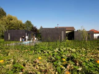 streckhof reloaded zellerndorf: moderner Garten von franz
