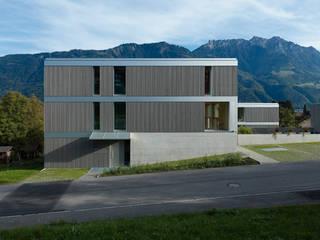 Fassadenkunst :   von Gohm Hiessberger Architekten