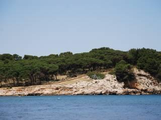 Paredes y pisos de estilo mediterráneo de Fitor Forestal SL Mediterráneo