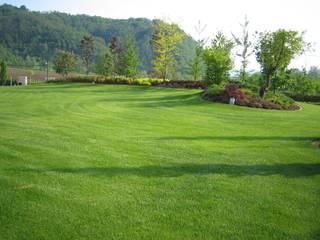 Modern Bahçe Garden Zerga Group Modern