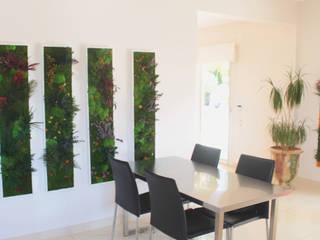 Décoration cuisine design vegetal Cuisine moderne par 3dvegetal Moderne