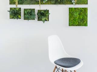 FlowerArt GmbH | styleGREENが手掛けた現代の, モダン 天然繊維 ベージュ