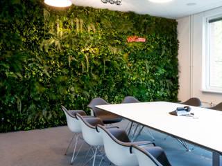 Grüne Wand für im Stil Dschungel:  Geschäftsräume & Stores von FlowerArt GmbH | styleGREEN