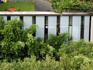 EDIFICIO TEOTIHUACAN Jardines minimalistas de Cm2 Management Minimalista