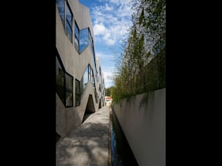 Tacoa Modern Houses