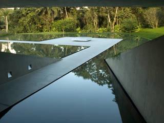 Galeria Adriana Varejão Tacoa Museos