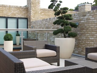 Minimalist Roof Terrace by Paul Dracott Garden Design Minimalist