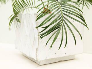 Горшки из бетона Extramiss Owner /designer Балкон, веранда и террасаРастения