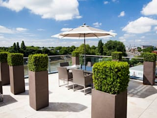 Kew Roof Terrace 根據 Cameron Landscapes and Gardens 現代風