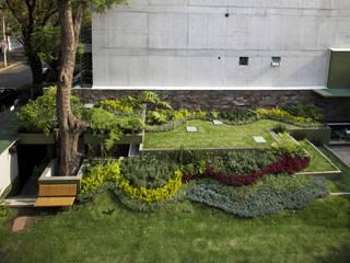 Jardin moderne par Cm2 Management Moderne