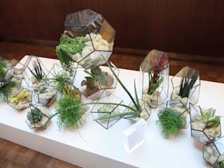 Terrarium Installations The Urban Botanist 客廳配件與裝飾品