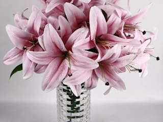 Flowers - Orchids and Lily: eclectic  by Uberlyfe,Eclectic
