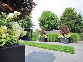Vrijstaande woning met uitzicht over het landschap Moderne tuinen van Hendriks Hoveniers Modern