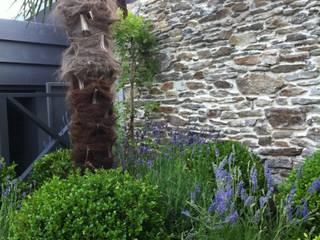 jardin nantes- palmier buis et lavandes: Jardin de style de style Classique par SO GREEN