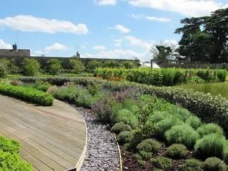 Walled Garden, Bradford Upon Avon Jardins modernos por Katherine Roper Landscape & Garden Design Moderno