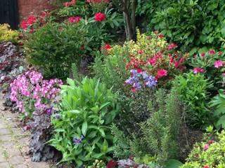 A shady border Rustic style garden by Anne Macfie Garden Design Rustic