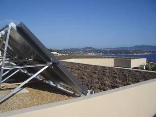 Un toit végétalisé de lavandes : Jardin de style  par Vanessa Cottin