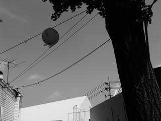 저집 (Jeo-Jip): studioVASE의  전시장