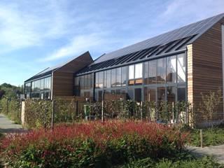 61 energieneutrale woningen in de Bomenbuurt, Ulft:   door ARX architecten