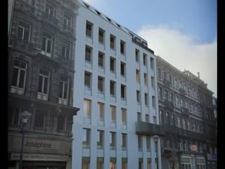 Description du parti architectural: Maisons de style  par altiplan°architects